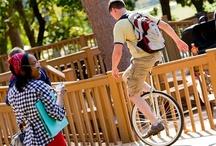 STUDENT LIFE / Get involved at UT Tyler www.uttyler.edu/admissions/studentlife/ / by UT Tyler