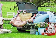 Picnics and Tailgating / by Isabella Wentworth