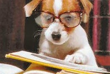 books pet owners must read / by MOXIEatx