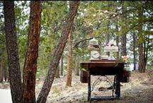 {buffet layouts} / by vintage rentals denver
