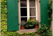 Gardens / Different gardening ideas  / by Cypress Homes