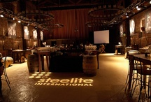 Shows & Displays / by Steelite International