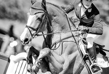equine elegance  / by scarlett poole