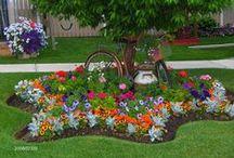 Great garden ideas!  / by Sheri Woodall