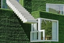 architecture / by Ilonka Keszeg
