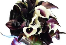 Wedding Bouquets / by WholeBlossoms Wholesale Wedding Flowers