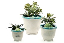 Turquoise Succulent Garden Collection / For more information on any of our pre-mades, please call 404-351-0000 or send us an email at order@heeney.com. / by Heeney Company