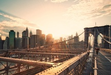 New York New York / by The Cool Hunter
