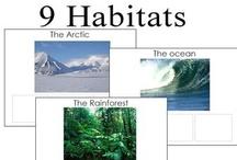 Animals habitats / by Airamty Sid