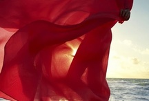 Saturation Series... Rouge / by Rachel Carfora
