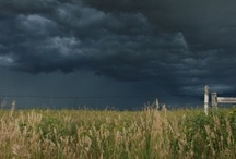 Storms a'Brewing / by Miranda Tidwell