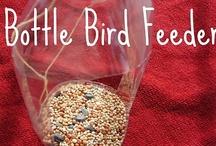 Bird Feeders / by Tonya Daisy