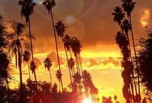The California I Love / by hcsboi