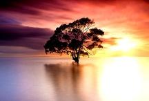 Australia / by Kay Parker