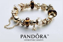 My Pandora Dream Wish List - Pandora Bracelet and Charms  / Pandora has created more than 800 handcrafted charms, available in sterling silver, 14k gold and murano glass, sometimes with semi-precious stones or precious gems. Other accessories for the bracelets include spacers and clips, which secure the loose beads in place and prevent them from falling off the bracelet when it is opened. / by Julie Sloan