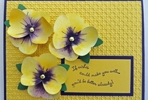 Cards: Flowers / by Camano Art Cards