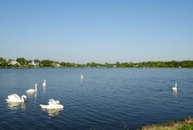 Lake Como, NJ / by Ward Wight Sotheby's International Realty