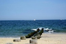 Bay Head, NJ / by Ward Wight Sotheby's International Realty