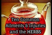 healing herbs/healing food / by Lucia Oller