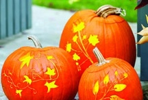 Holiday Halloween/Fall Deco / by Kristin Sauvage-Leindecker