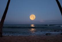 Moon, Venus..... / by Yolanda Hernandez