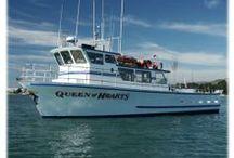 Exploring Half Moon Bay  / Area activities / by Seal Cove Inn