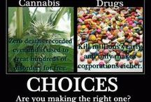Cannabis/hemp facts,studies & pics / Anything educational or facts & pics i find to help spread cannabis/hemp awareness.   / by Troy Skaggs