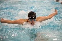Wyoming Swimming & Diving / *Just Keep Swimming* / by Wyoming Cowboys