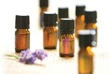 Essential Oils Uses n Tips / by Lori Midgley