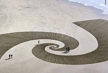 Fibonacci / by Kiku Botura