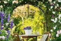 Gardens / by Renee Samuel