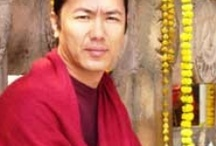 Buddha, Dharma, and Sangha / by Dora Zion