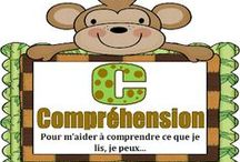 LECTURE COMPREHENSION / by La p'tite fouine