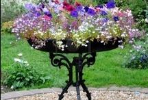 Comment fleurir fenêtres, balcons & terrasses / quelques idées pour s'inspirer ou reproduire / by Francine Hug