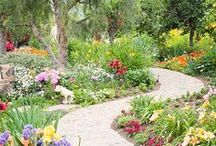 Gardens - Flowers, Bird Houses and Decor / by Patty Marty