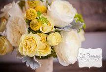 Wedding Ideas / by Kari Plaats