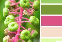 color palettes / by Mercantile & Artistic Paperie