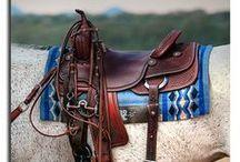 Horse :) / by Deven Morrison