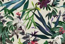 Tropical/Exotica/Jungle Loves / by Mirella Bruno
