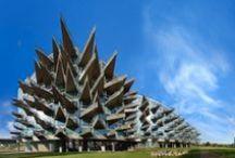 Architecture / by Erwin Elschott