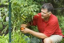 YARD AND GARDEN IDEAS AND REMEDIES / by Beverly Kassinger