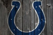 • blue + white • / GO COLTS! :) / by Kaitlyn Korte