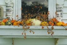 Seasonal Decor / by Sarah Stewart
