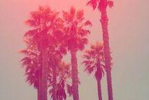 Seasonal Vision / SPRING | SUMMER | FALL | WINTER / by Old Navy