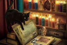 Tomo / Black Cat......# / by Donita Hellmann