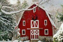 ~ A Country Christmas ~ / by Cathi Rafalski