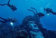 Amazing Destinations / by Georgia Aquarium