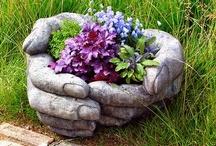 GARDENING & PLANTS / by Linda Vollmer