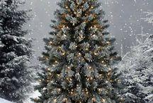 Christmas / by Julie Hood