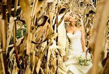 Country Wedding <3 / Country/rustic wedding ideas / by Amy Gallaher